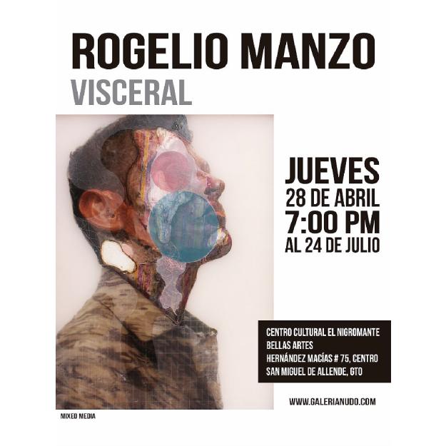 Exhibicion, Visceral, Rogelio Manzo, Bellas Artes San Miguel de Allende